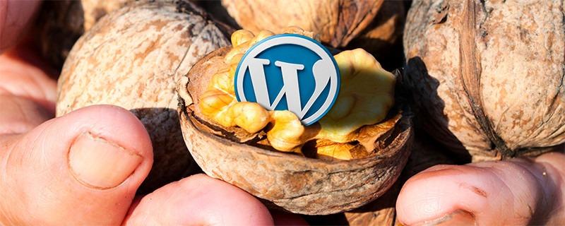 WordPress-logo saksanpähkinän sisällä